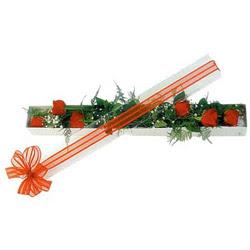 Düzce çiçek online çiçek siparişi  6 adet kirmizi gül kutu içerisinde
