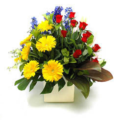 Düzce yurtiçi ve yurtdışı çiçek siparişi  9 adet gül ve kir çiçekleri cam yada mika vazoda