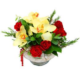 Düzce online çiçek gönderme sipariş  1 adet orkide 5 adet gül cam yada mikada