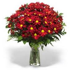 Düzce çiçek siparişi vermek  Kir çiçekleri cam yada mika vazo içinde