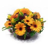 gerbera ve kir çiçek masa aranjmani  Düzce güvenli kaliteli hızlı çiçek