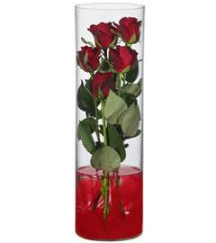 cam içerisinde 7 adet kirmizi gül  Düzce çiçek mağazası , çiçekçi adresleri