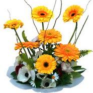 camda gerbera ve mis kokulu kir çiçekleri  Düzce cicek , cicekci