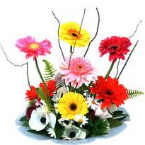 Düzce anneler günü çiçek yolla  camda gerbera ve mis kokulu kir çiçekleri