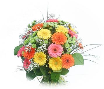 13 adet gerbera çiçegi buketi  Düzce yurtiçi ve yurtdışı çiçek siparişi