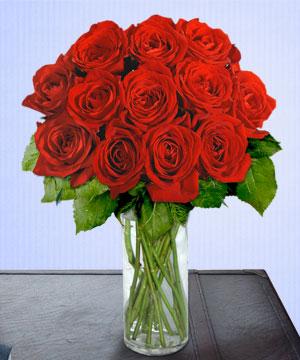 Anneme 12 adet cam içerisinde kirmizi gül  Düzce çiçek online çiçek siparişi