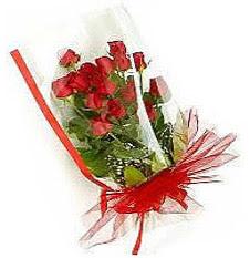 13 adet kirmizi gül buketi sevilenlere  Düzce güvenli kaliteli hızlı çiçek