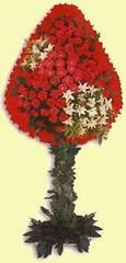 Düzce online çiçek gönderme sipariş  dügün açilis çiçekleri  Düzce çiçekçi telefonları