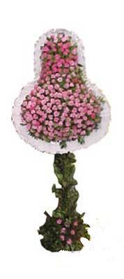 Düzce 14 şubat sevgililer günü çiçek  dügün açilis çiçekleri  Düzce kaliteli taze ve ucuz çiçekler