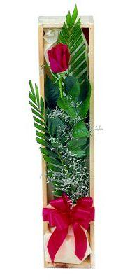 1 adet kutuda kirmizi gül  Düzce internetten çiçek siparişi
