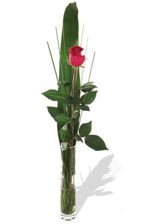 1 adet cam vazo içerisinde kirmizi gül  Düzce uluslararası çiçek gönderme