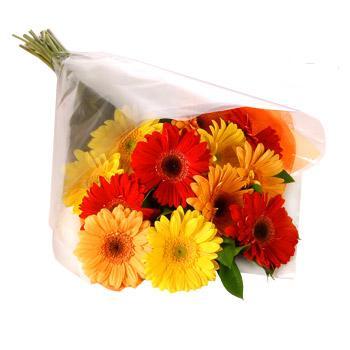 Karisik renklerde gerbera buketi  Düzce çiçek yolla , çiçek gönder , çiçekçi