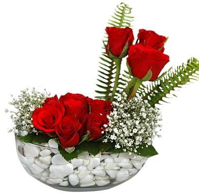 cam içerisinde 9 adet kirmizi gül  Düzce güvenli kaliteli hızlı çiçek