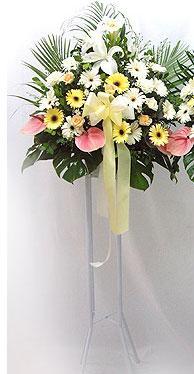 Düzce yurtiçi ve yurtdışı çiçek siparişi   perförje çiçegi dügün çiçekleri