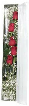 Düzce çiçek online çiçek siparişi   5 adet gülden kutu güller