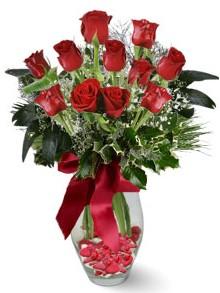 9 adet gül  Düzce çiçek servisi , çiçekçi adresleri  kirmizi gül