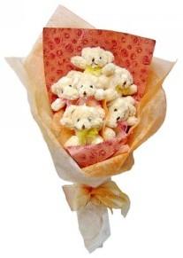 12 adet ayiciktan buket  Düzce çiçek online çiçek siparişi