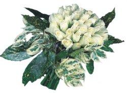 Düzce kaliteli taze ve ucuz çiçekler  9 Beyaz gül Özel kisiler için
