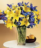 Düzce çiçek yolla  Lilyum ve mevsim  çiçegi özel