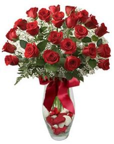 17 adet essiz kalitede kirmizi gül  Düzce çiçek , çiçekçi , çiçekçilik