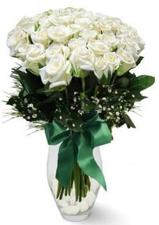 19 adet essiz kalitede beyaz gül  Düzce çiçek mağazası , çiçekçi adresleri
