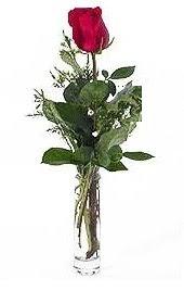 Vazo içerisinde 1 adet kirmizi gül  Düzce çiçek yolla , çiçek gönder , çiçekçi