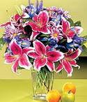 Düzce çiçek , çiçekçi , çiçekçilik  Sevgi bahçesi Özel  bir tercih