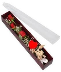 kutu içerisinde 3 adet gül ve oyuncak  Düzce çiçek yolla , çiçek gönder , çiçekçi