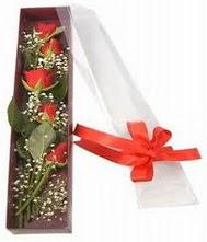 kutu içinde 5 adet kirmizi gül  Düzce kaliteli taze ve ucuz çiçekler