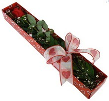 Tek kirmizi gül kutu içerisinde  Düzce hediye çiçek yolla