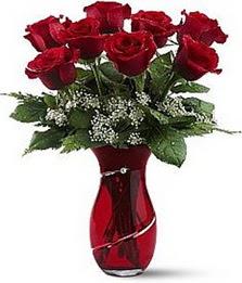 Vazo içinde 8 adet kirmizilar içinde güller  Düzce kaliteli taze ve ucuz çiçekler