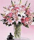 Düzce internetten çiçek satışı  Kazablanka biçme vazoda
