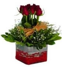 Düzce online çiçek gönderme sipariş  7 adet mika yada cam vazoda gül tanzimi