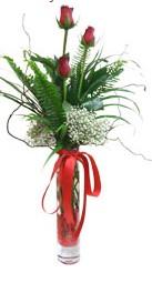 Düzce çiçek online çiçek siparişi  3 adet kirmizi gül vazo içerisinde