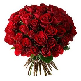Düzce uluslararası çiçek gönderme  33 adet kırmızı gül buketi