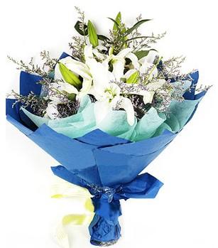 Düzce çiçek yolla  4 adet dal kazablankadan görsel buket