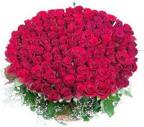 Düzce çiçek siparişi sitesi  100 adet kırmızı gülden görsel buket