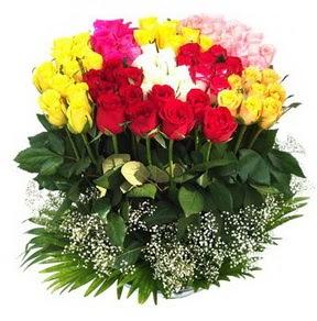 Düzce çiçek , çiçekçi , çiçekçilik  51 adet renkli güllerden aranjman tanzimi
