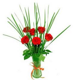 Düzce uluslararası çiçek gönderme  6 adet kırmızı güllerden vazo çiçeği