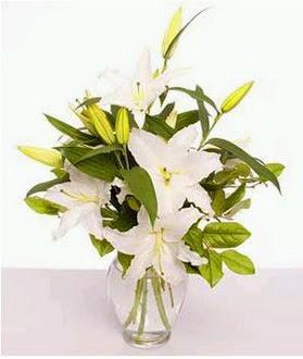 Düzce online çiçek gönderme sipariş  2 dal cazablanca vazo çiçeği