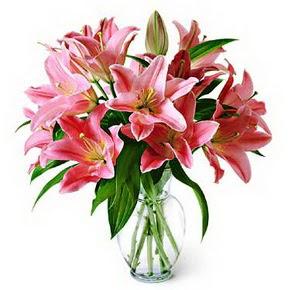 3 dal kazablanka görsel vazosu  Düzce kaliteli taze ve ucuz çiçekler
