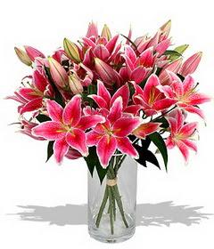 4 dal cazablanca görsel vazosu  Düzce hediye sevgilime hediye çiçek