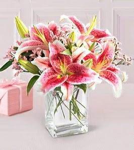 2 dal kazablanka görsel vazosu  Düzce çiçek online çiçek siparişi