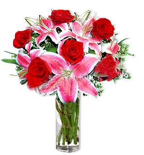 Düzce çiçek siparişi vermek  1 dal cazablanca ve 6 kırmızı gül çiçeği