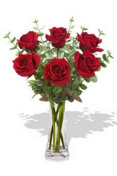 Düzce hediye sevgilime hediye çiçek  6 kırmızı gül vazosu