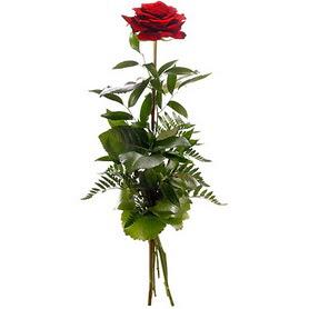 Düzce çiçek siparişi sitesi  1 adet kırmızı gülden buket