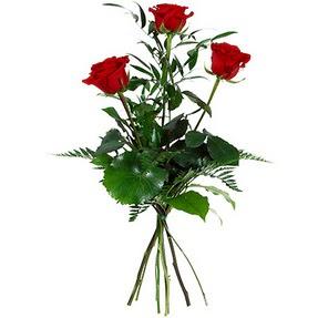Düzce İnternetten çiçek siparişi  3 adet kırmızı gülden buket