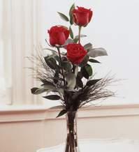 Düzce çiçek servisi , çiçekçi adresleri  Vazoda 3 adet güzel gül