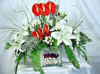 Düzce çiçek , çiçekçi , çiçekçilik  Anthurim Kazablanka  gül