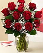 Sevgilime hediye 9 adet 1.ci kalite gül  Düzce çiçek yolla